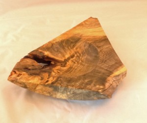 Buckeye triangle